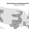 Responses By State